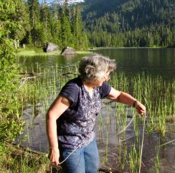 Casting a plankton net at Lake Dorothy